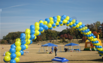 Real Packed Balloon Arch